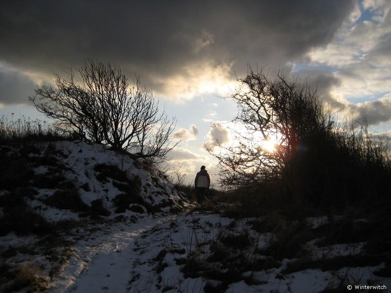 Landschaft im Schnee mit dramatischem Lichteinfall