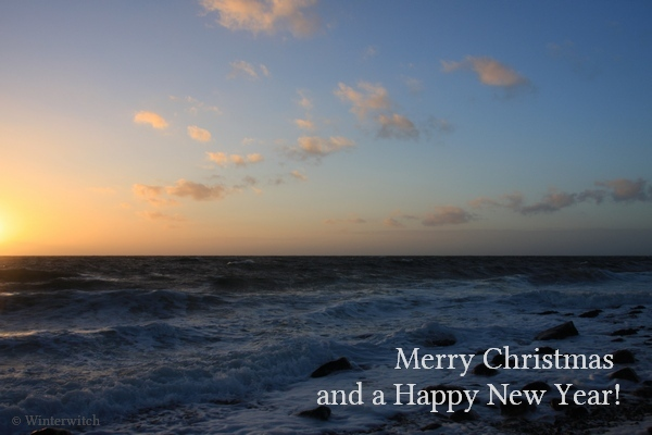 Seascape photo with Christmas greetings
